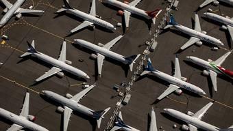Für Boeing-Maschinen vom Typ 737 MAX war im März ein weltweites Flugverbot verhängt worden, nachdem innerhalb von fünf Monaten zwei Maschinen dieses Typs unter ähnlichen Umständen abgestürzt waren.