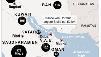 Der Seeweg vom Golf von Oman durch das Nadelöhr von Hormus in den Persischen Golf ist ein wichtiger Transportweg für Öltanker. (Archiv)