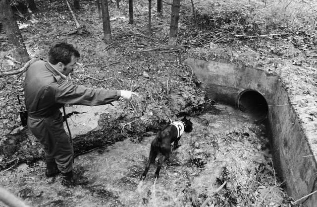 Grossangelegte Suche nach dem vermissten Mädchen am 6. Mai 1986 bei Wolfikon TG.