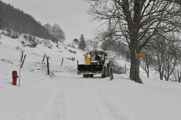 Andreas Deola pflügt mit dem Traktor die Strasse bis zur Schmiedematt.