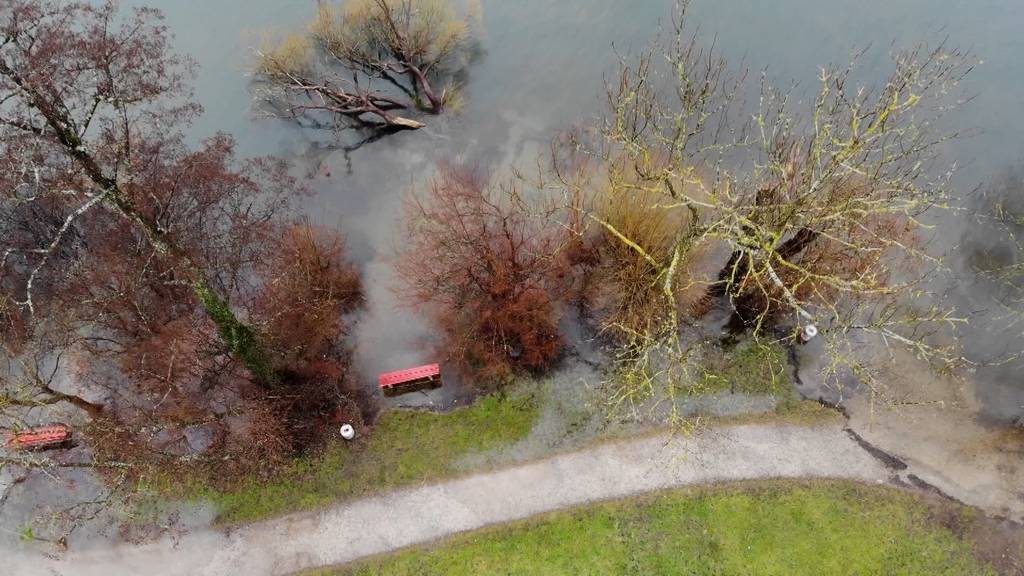 Hochwasser am Greifensee