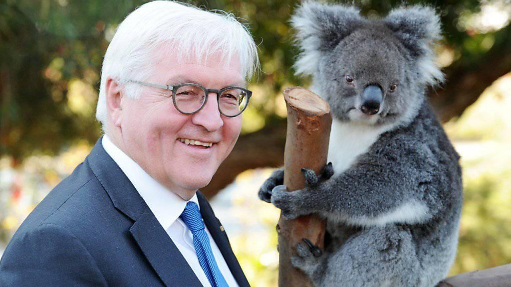 Der deutsche Bundespräsident Frank-Walter Steinmeier mahnt während seines Staatsbesuches in Australien den Aufbau neuer Handelsbarrieren an.