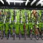 Elf Fahrräder im Wert von 40'000 Franken wurden entwendet. (Symbolbild)