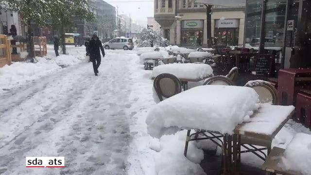 Winterliches Erwachen im Frühling
