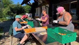Aprikosen werden von Hand für den Trocknungsvorgang vorbereitet.