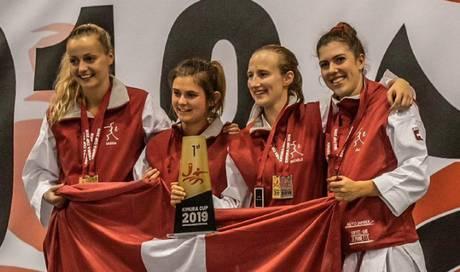 Fünf Medaillen für Karate Limmattal - Limmattaler Zeitung