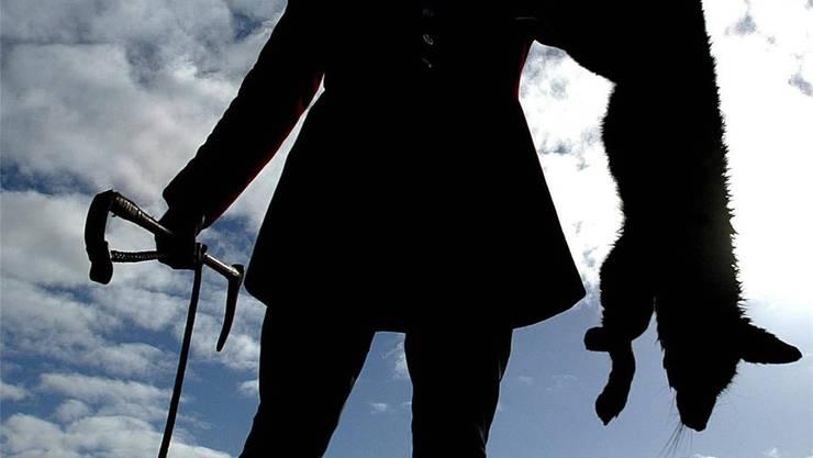 Die private Jagd soll in Basel-Stadt nicht verboten und durch staatliche Wildhüter nach Genfer Modell ersetzt werden.  (Symbolbild)
