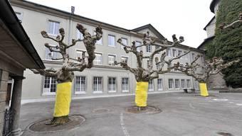 Tatort: Der Pausenhof des Schulhaus Kollegium Solothurn. Hier kam es an der Fasnacht 2010 zur versuchten vorsätzlichen Tötung.Foto/Archiv: Oliver Menge