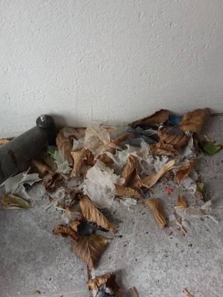 Kleine, sich zersetzende Papier- und Plastikfetzen verteilen sich in Gärten, auf Weiden und in Dachrinnen.