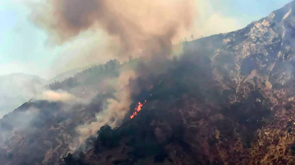 HANDOUT - Es brennt in der Gegend um den Nationalpark Aspromonte in Kalabrien. Die Region an der italienischen Stiefelspitze kämpft seit Tagen gegen heftige Brände, die Flammen sind bis in den von der Unesco gelisteten Naturpark vorgedrungen. Foto: -/Parco Nazionale Aspromonte/dpa - ACHTUNG: Nur zur redaktionellen Verwendung im Zusammenhang mit der aktuellen Berichterstattung und nur mit vollständiger Nennung des vorstehenden Credits