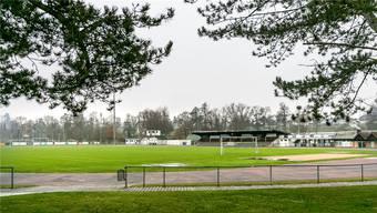 Der Hauptplatz der Sportanlage Wilmatten bleibt als Naturrasen bestehen.