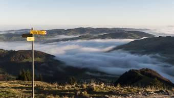 Gipfel und Täler bilden isolierte Lebensräume. Gebiete in mittleren Lagen sind grösser und mehr vernetzt. Das erklärt ihre besonders grosse Artenvielfalt, wie Schweizer Forschende nun zeigen. (Archiv)