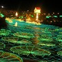Beim Lichterfestival in Kolumbien wird jedes Jahr zur Weihnachtszeit der Fluss Medellin mit Millionen von Lichtern ausgeleuchtet.