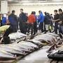 Von der Scholle bis zum Blauflossenthunfisch: Tsukiji, der berühmte Fischmarkt in Tokio, bot alles, was das Herz von Fischliebhabern höher schlagen lässt. Nun hat er nach 83 Jahren seinen Betrieb eingestellt.