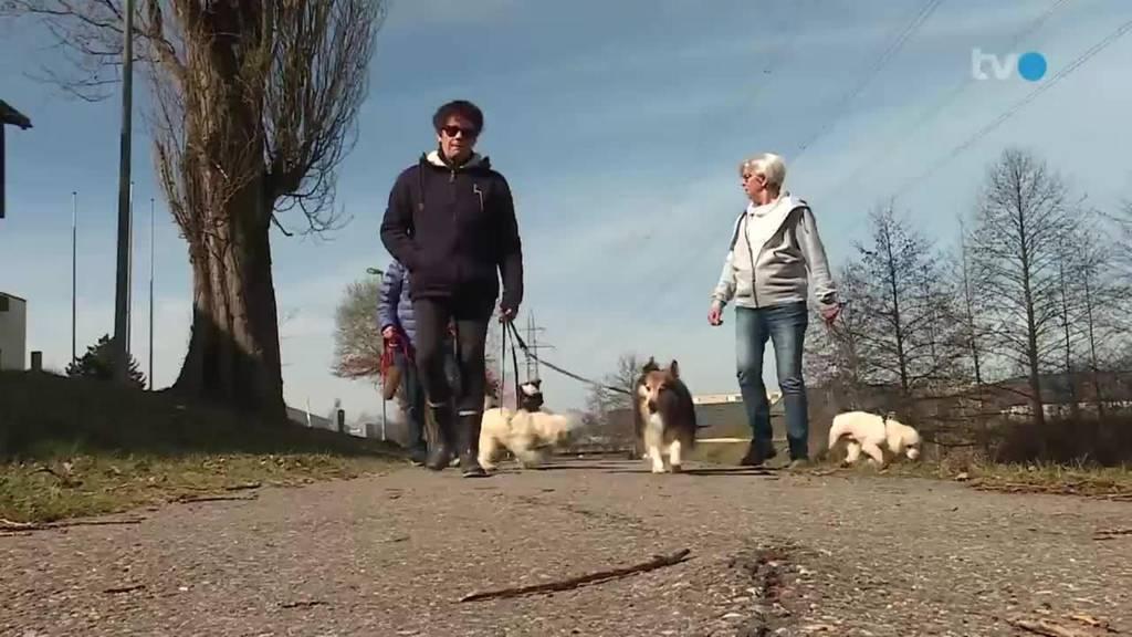 Wiedereröffnung / «Pensionäre auf Hundetour»