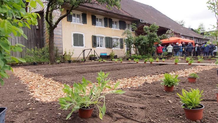 Das Feld ist angerichtet; der Bauerngarten kann bestellt werden.