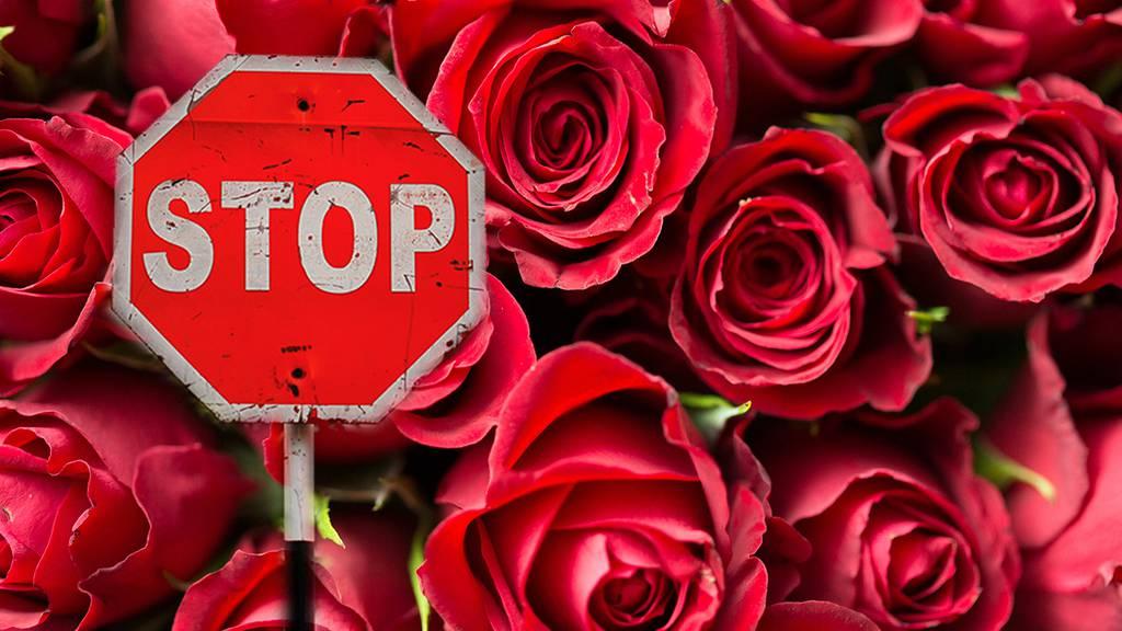 Last Minute Valentinstag-Geschenke