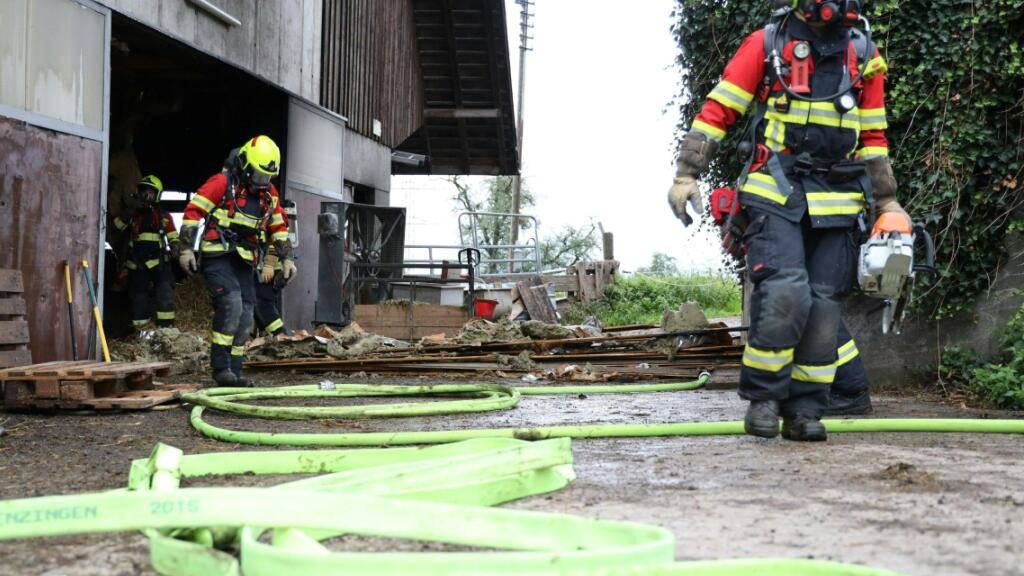 Ein Landwirt in Menzingen konnte den Brand in seiner Scheune vor dem Eintreffen der Feuerwehr selbständig löschen. Die Feuerwehr entfernte danach die Deckenverkleidung im Umfeld des Brandes und untersuchte die Scheunendecke auf weitere Glutnester.