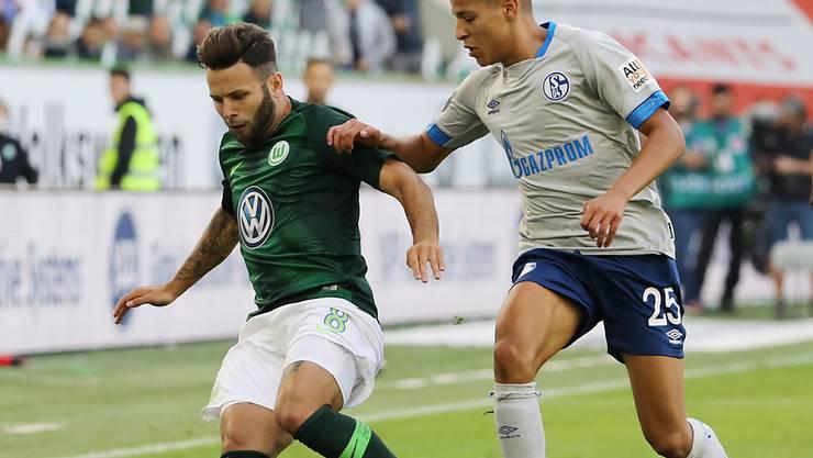 Renato Steffen und Wolfsburg glückt der Auftakt in die Saison gegen Schalke