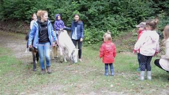 40 Jahre Tierpark Bad Zurzach