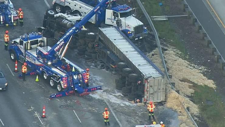 Was für eine Hühnerei: Der Camion verlor bei einem Unfall seine Ladung - 20 Tonnen Federn.