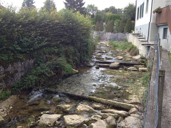 So sah es vor den Bauarbeiten mit wenig Wasser aus.