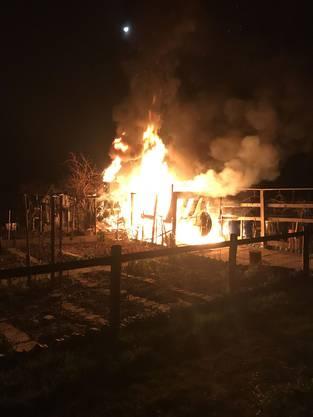 In der Nacht auf Sonntag brannte in Muttenz ein Gartenhaus. Es entstand erheblicher Sachschaden.