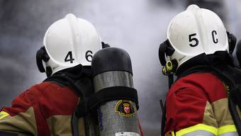 Die Berufsfeuerwehr der Rettung Basel-Stadt musste den Brand löschen. (Symbolbild)