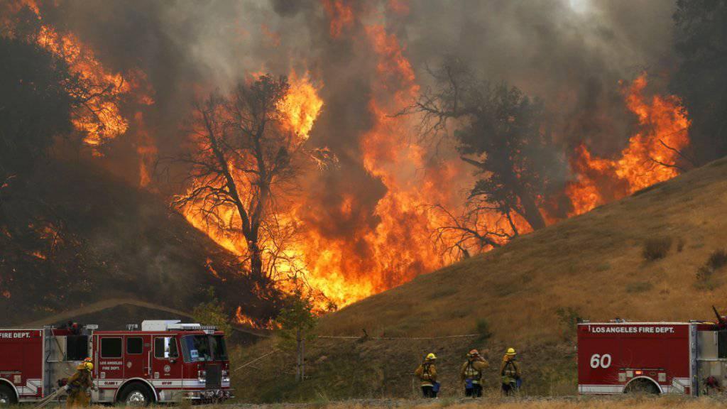 Feuerwehrleute kämpfen gegen die Flammen bei Santa Clarita.