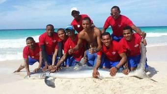 Dieser Clip zur Hai-Jagd kursiert im Netz.