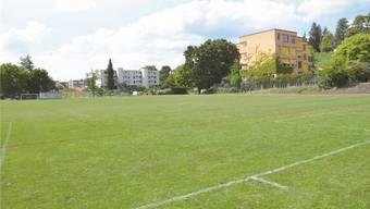 Der Fussballplatz würde gemäss Vorlage in ein Natur- und ein Kunstrasenfeld aufgeteilt. Doch auch andere Vereine könnten von der Sanierung profitieren.