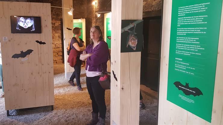 Eine permanente Ausstellung klärt Gäste über die tierischen Mitbewohner auf.