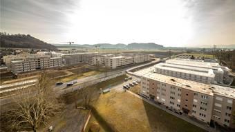 2016 waren die ersten 200 Wohnungen im Quartier Esterli-Flöösch bezugsbereit. Weitere 300 Einheiten kommen bis diesen Herbst dazu, 2020 weitere 50.