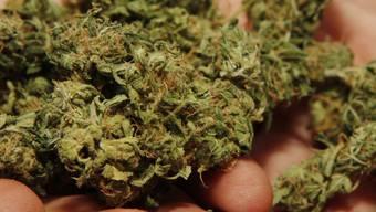 Die Polizei beschlagnahmte das Marihuana (Symbolbild)