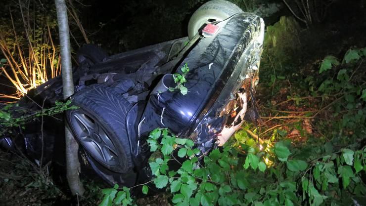 Der Fahrer konnte sich aus dem Fahrzeug selbst befreien.