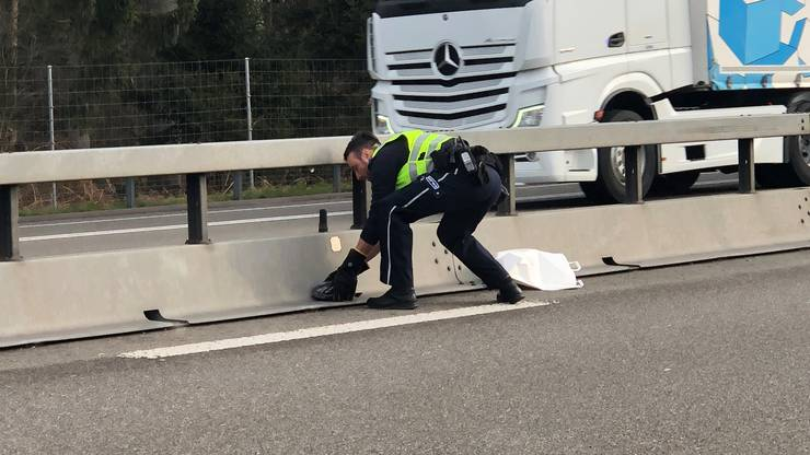 Auf der Autobahn A1 zwischen Lenzburg und Mägenwil befand sich eine Taube auf der Fahrbahn.