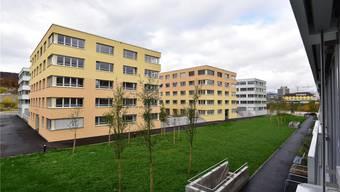 Das neue Wohnquartier im Mittelpunkt des Diskurses.