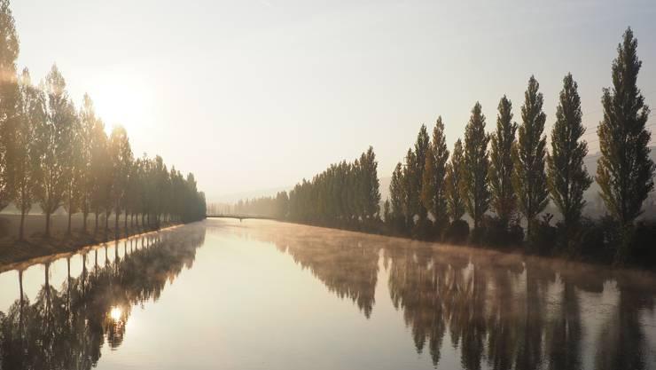 Feinster Morgennebel zieht über den Aarekanal in Winznau.