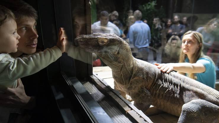 Im Aquatis in Lausanne können Kinder bedrohten Tierarten nahe kommen.