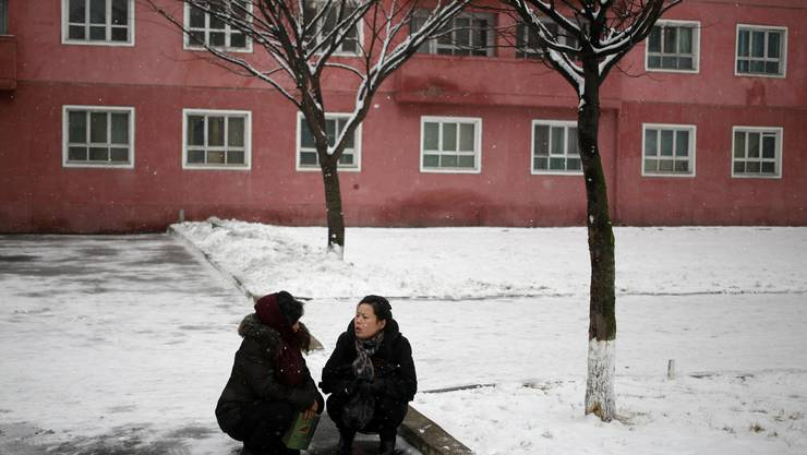 North Korean women chat under a tree in Pyongyang, North Korea, where the winter season has started, on Sunday, Dec. 16, 2018. (AP Photo/Dita Alangkara)