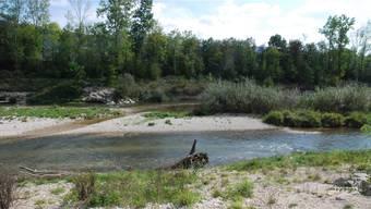 Im rahmen des IBA-Projekts Birspark Landschaft sollen an der Birs Erholungsräume entstehen, aber auch Schutzmassnahmen umgesetzt werden.