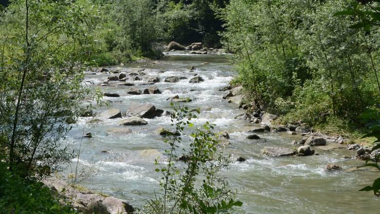2017 floss weniger Quellwasser durch die Bergdietiker Leitungen. Dafür konnte auf mehr Reppisch-Grundwasser zurückgegriffen werden.