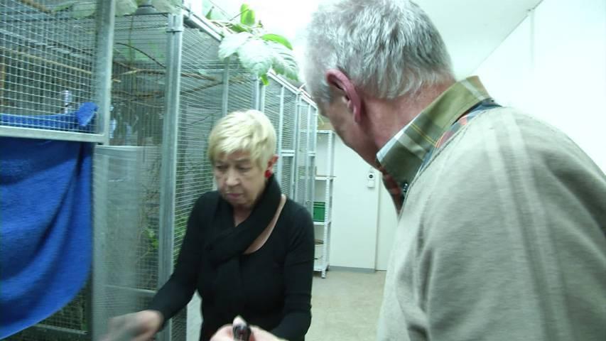 Vogelpflegestation St.Gallen nimmt Betrieb wieder auf