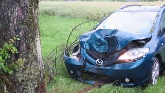 Der Lenker verlor die Kontrolle über sein Fahrzeug und krachte in einen Baum.