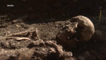 Ende Juni stiessen Bauarbeiter im Raum Olten auf die sterblichen Überreste eines Menschen. Das Skelett warf viele Fragen auf, nun schafft eine anthropologische Analyse für Klarheit: Das Skelett stammt aus dem Hochmittelalter und ist über 900 Jahre alt.
