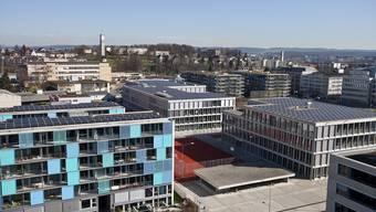 Flachdächer soll in Zürich ökologisch begrünt werden.
