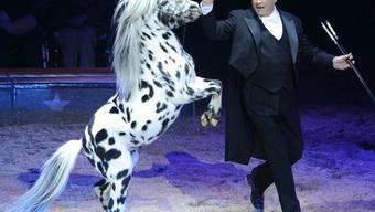 """""""Nenn mich bloss nicht Herr Direktor"""": Fredy Knie junior bei einer Pferdenummer (Archiv)"""