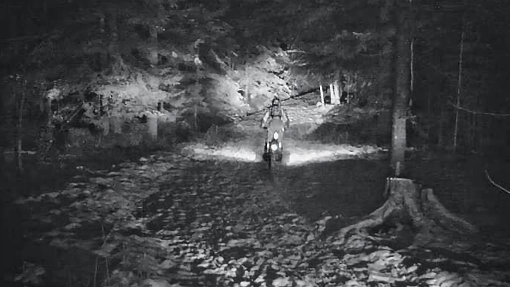 Töff-Rowdies wüten in Bernhardzeller Wald