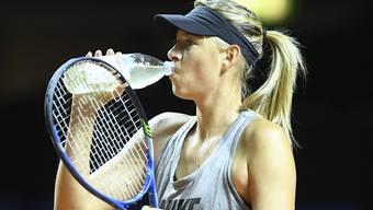 Maria Scharapowa erhält keine Wildcard für die French Open