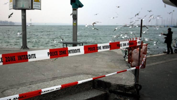 Vor 10 Jahren wurden ganze Ufergebiete des Genfersees abgesperrt, nachdem bei toten Enten das Vogelgrippevirus vermutet wurde. Heute, 2016, sind die Behörden besser vorbereitet. Zudem ist das aktuelle Virus nicht auf den Menschen übertragbar. (Archivbild)